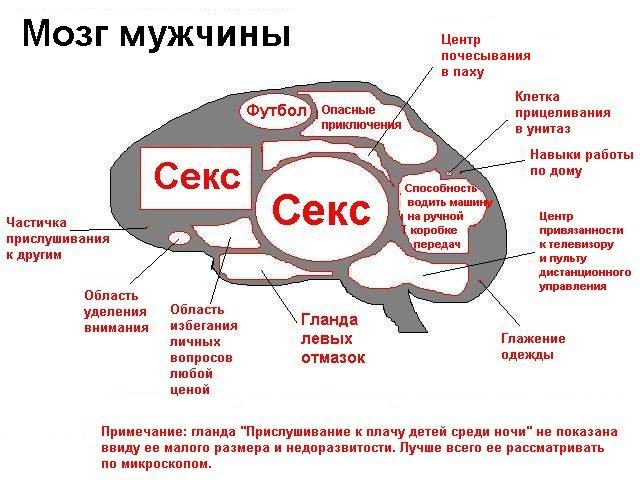 prikol_504_01.jpg