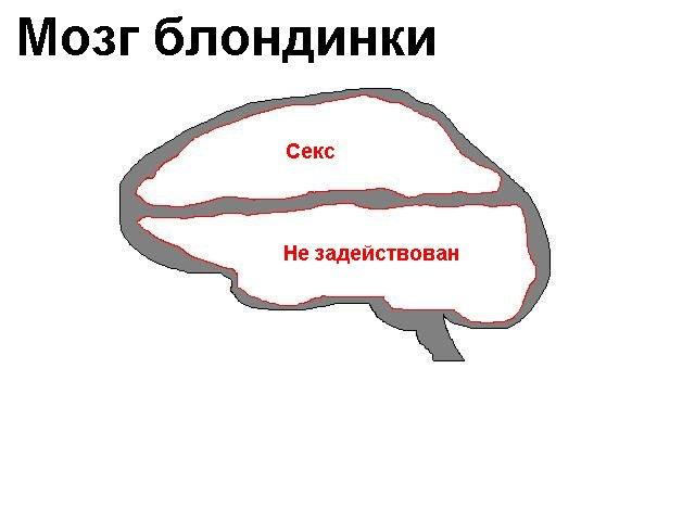Мы красивее, чем вы умнее.(с). наконец-то учёные спроектировали самую простую схему женского мышления!